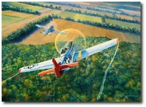 The Color of Courage by Rick Herter P 51C Mustang, German Focke Wulf 190