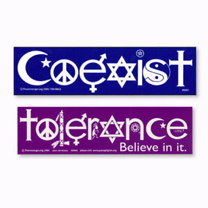 Coexist and Tolerance Interfaith Word Peace Symbol Glyph 2 PACK Decal Sticker