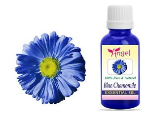 Angel Blue Chamomile Natural Pure Undiluted Uncut Essential Oil 3ML To 1000ML