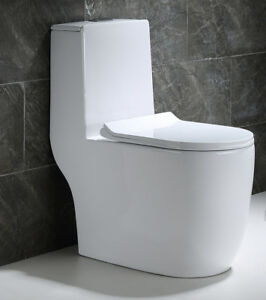 Hometure Dual Flush Elongated One Piece Toilet with Soft Closing Seat Modern