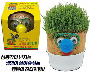 Smurf Grass Doll Real Grass Seeds Just Spray Water Ideal for Gift