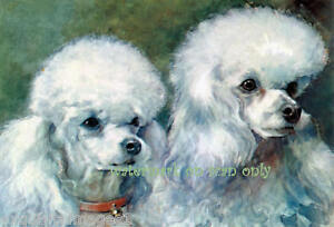 Antique Art White Poodle Dogs NEW Large Note Cards $12.95