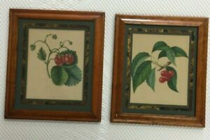 19TH CENTURY ANTIQUE MATCHED PAIR FRUIT STUDY LITHOGRAPH FRAMED circa 1853 $58.50