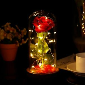 Beauty And the Beast Enchanted Red Rose LED Lights Dome Wedding Xmas Decor Gift
