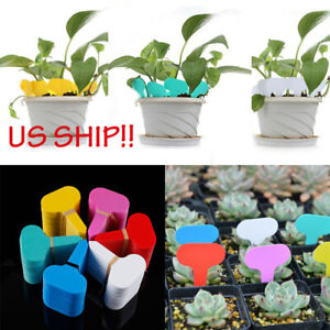 US 100 pcs Plastic Plant Pot Markers Seed Garden Stake Tags Nursery Labels Tool