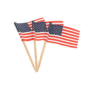 Royal American Flag Food and Cocktail Picks, Case of 20,000, R827