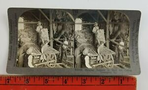Vintage Keystone View Stereoscope Hanging Tabacco for Curing Lexington Kentucky $12.49