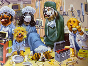 👀Kids card Animals dogs cats dressed as doctors doggone it sure hope u get well
