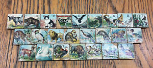 Antique Set Of Complete Alphabet Animal Lithograph Tiles Blocks Mats $55.00
