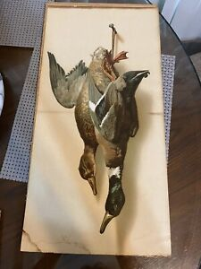 Antique Chromolithograph Wild Ducks By Helena McGuire $211.50