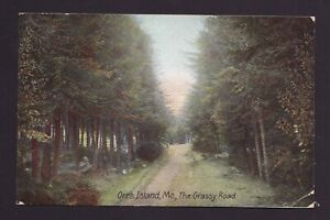 Old Vintage 1907 Postcard of Orr#x27;s Island Maine ME The Grassy Road