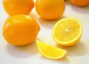 Meyer Lemon (5 seeds) fresh ths season's harvest {juicy, delicious}