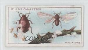 1914 Wills Garden Life Tobacco Woolly Aphis #43 1i3 $1.40