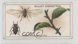 1914 Wills Garden Life Tobacco Cherry Aphis #34 1i3 $2.70