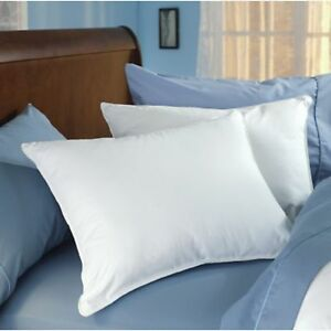Envirosleep Dream Surrender King Pillow found at Doubletree Hotels $57.50