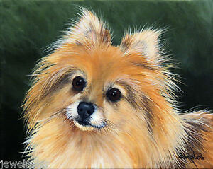 Custom Pet Painting Animal Artist Sharon Lamb Dog Cat Horse Pet Portrait Art $155.00