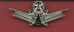 US Command Space Operations Wings Badge NASA