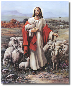Jesus The Shepherd holding Lamb With Sheep In Meadow Wall Art Print Picture $12.75