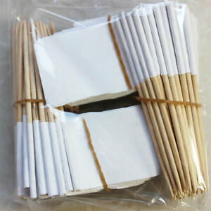 Blank Toothpicks Sandwich Flags Fruit Cupcake Cocktail 100X Decor Food Party