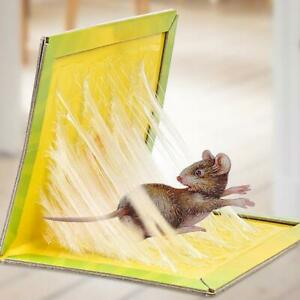 Rat Trap Snare Mouse Glue Snare Traps Mice Rodent Sticky Boards Tool