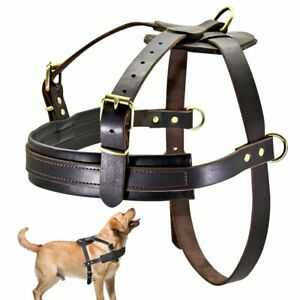 Harness Durable Dog Genuine Leather Dogs Pulling Harness Vest Pet Training Vests