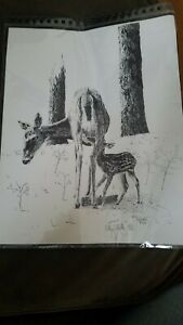 Kelly Vollrath 1976 lithograph signed numbered doe 657800