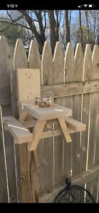 Squirrel Picnic Table! With Peanuts!