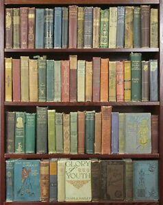 Lot of 10 Old Antique Vintage Rare Books Mixed and varied colors Hardcover