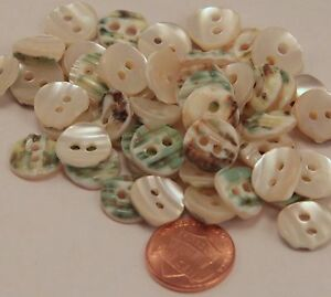 12 Small Curved Thick Cream Green Mother of Pearl Buttons Almost 1 2quot; 12MM 6130 $4.99