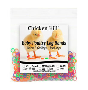 100 Chick Leg Bands 5 16quot; Size 5 Large Poultry Chickens Ducks Geese
