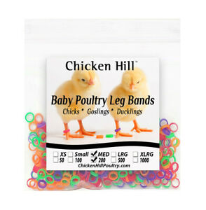 200 Mix Color Chick Leg Bands 1 4quot; Size 4 Poultry Chickens Ducks Geese Day Old