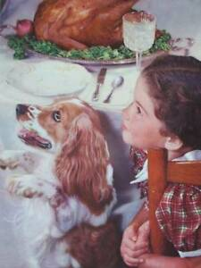 Vintage Lithograph 1950s Girl and dog Thanksgiving $10.95