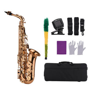 Professional Saxophone Sax Eb Be Alto E Flat Brass with Case+Care Kit Durable