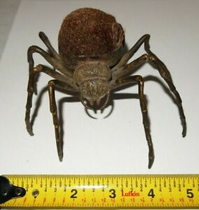 Antique Bronze Figural Large Spider Pen Wipe 3.5