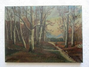 Antique SIGNED Primitive Oil on Canvas of Wooded Landscape Painting $65.50