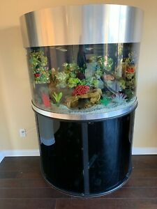 Half-Moon Fish Tank w Fish and all Equipment in Fresh Water Decor  Fluval etc