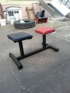 larry scott style twin pedestal bench for triceps vince gironda