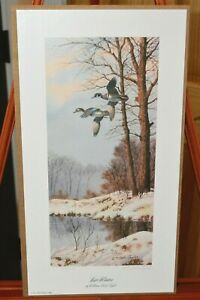 William Redd Taylor Print ~ LATE WINTER ~ Limited Edition & Signed Prints
