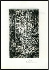 Forest Trees Landscape ORIGINAL ETCHING Signed Limited Edition Art Print $24.00