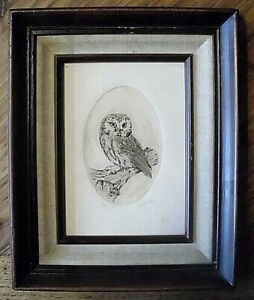 Vtg Artist Proof quot;Owlquot; Etching Signed Dated quot;Rossi 82quot; $15.00