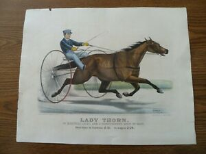 quot; Lady Thorn quot; 1871 Lithograph Currier amp; Ives ORIGINAL $95.00
