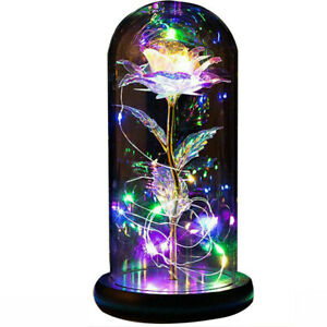 20LED Crystal Galaxy Rose In Glass Dome Gift for Girl Mom Wife Valentines Day