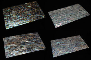 Paua Shell Coated Veneer Sheets (Mother of Pearl MOP Overlay Inlay Luthier Lure)