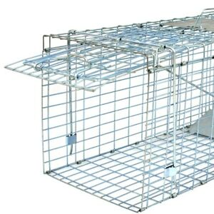 Live Animal Trap Extra Large Rodent Cage Garden Rabbit Raccoon Cat 32quot; x 12.5quot;