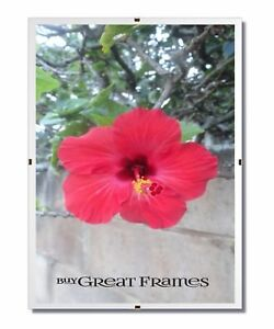 GreatClip Glass and Clip Frames - Great for Pictures, Photos, Art