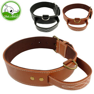 Dog Collar Leather Handle Lead Heavy Soft Padded Light Weight With Nylon Inner