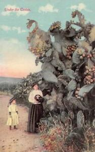 WOMAN amp; LITTLE GIRL Under Large CACTUS Prickly Pear Fruit c1910s Postcard $6.74