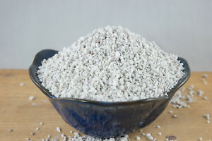 1 Gal. Horticultural Perlite for Seedling, Cuttings and Succulent Soil - Small