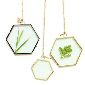 Metal Glass Hexagon Hanging Plant Art Picture Creative Double Slide Photo Frames
