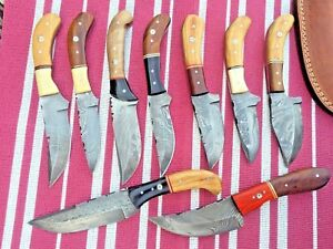 CUSTOM HAND MADE DAMASCUS STEEL BLADE HUNTING KNIFE LOT OF 10